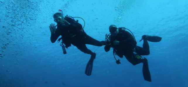 Recently Qualified PADI Diver?
